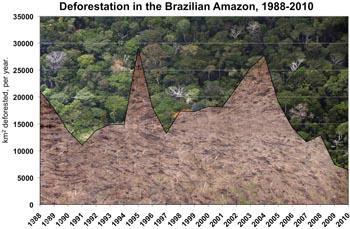 Déforestation annuelle en Amazonie brésilienne
