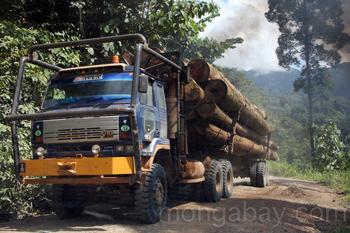 Camión llevando madera
