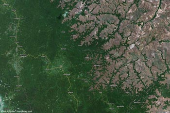 Photo Google Earth de la perte de forêts en bordure du Bassin du Congo