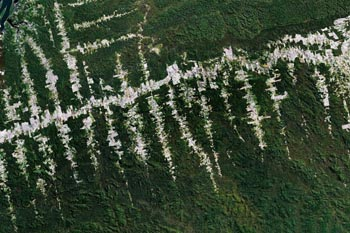 Satellite image of deforestation in Brazil, courtesy of Google Earth