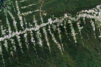 Photo satellite de la  déforestation au Brésil, avec la gracieuse autorisation de Google Earth