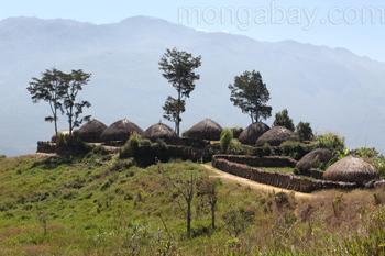Dani village