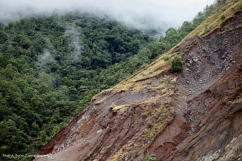 Landslide in Papua (Indonesian New Guinea)