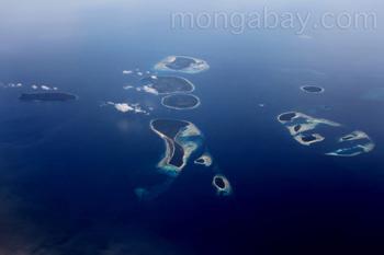 Islas de Bird's Head, norte de Nueva Guinea