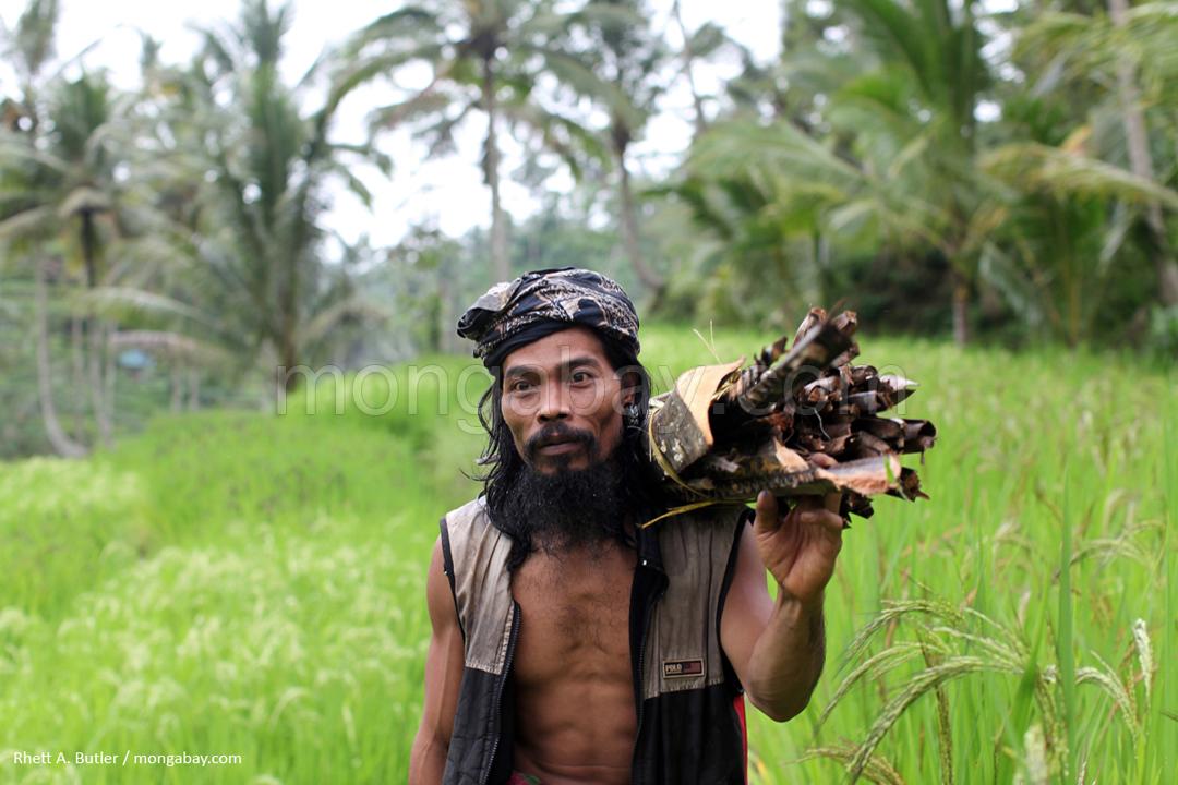 Dorfbewohner auf Bali