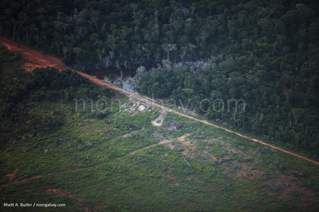 Abholzung im brasilianischen Amazonas