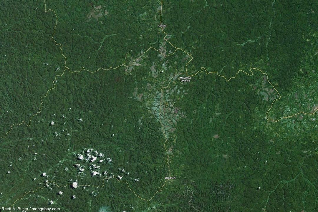 Google Earth-Bild von kleinflächiger Abholzung