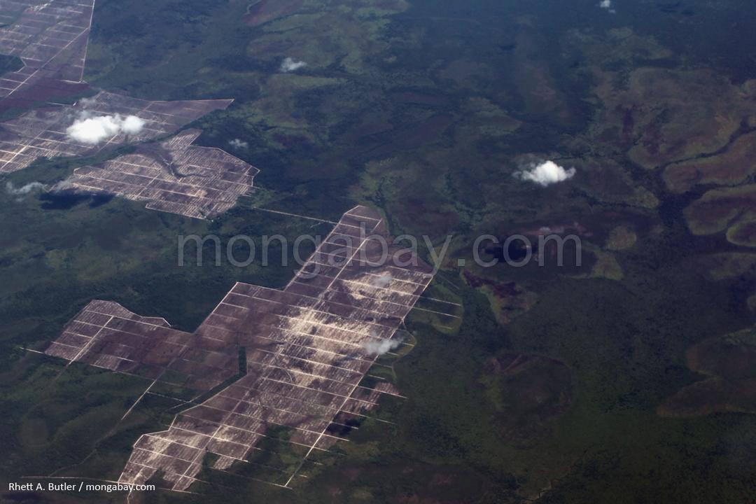 Blick aus dem Flugzeug auf Zerstörung von Sumpfland in Kalimantan