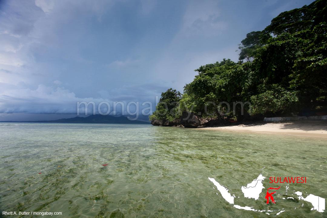 Strand auf Sulawesi