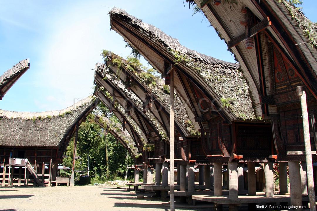 Traditionelle Häuser in Torajaland