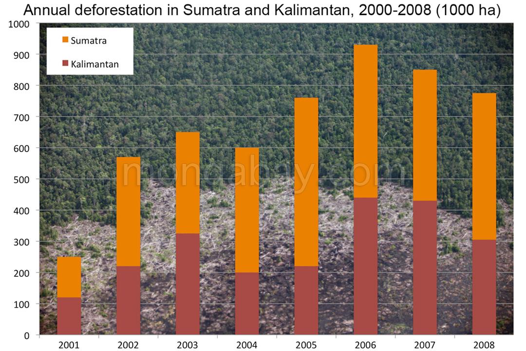 Diagramm: Jährliche Abholzung auf Sumatra und in Kalimantan, 2001-2008