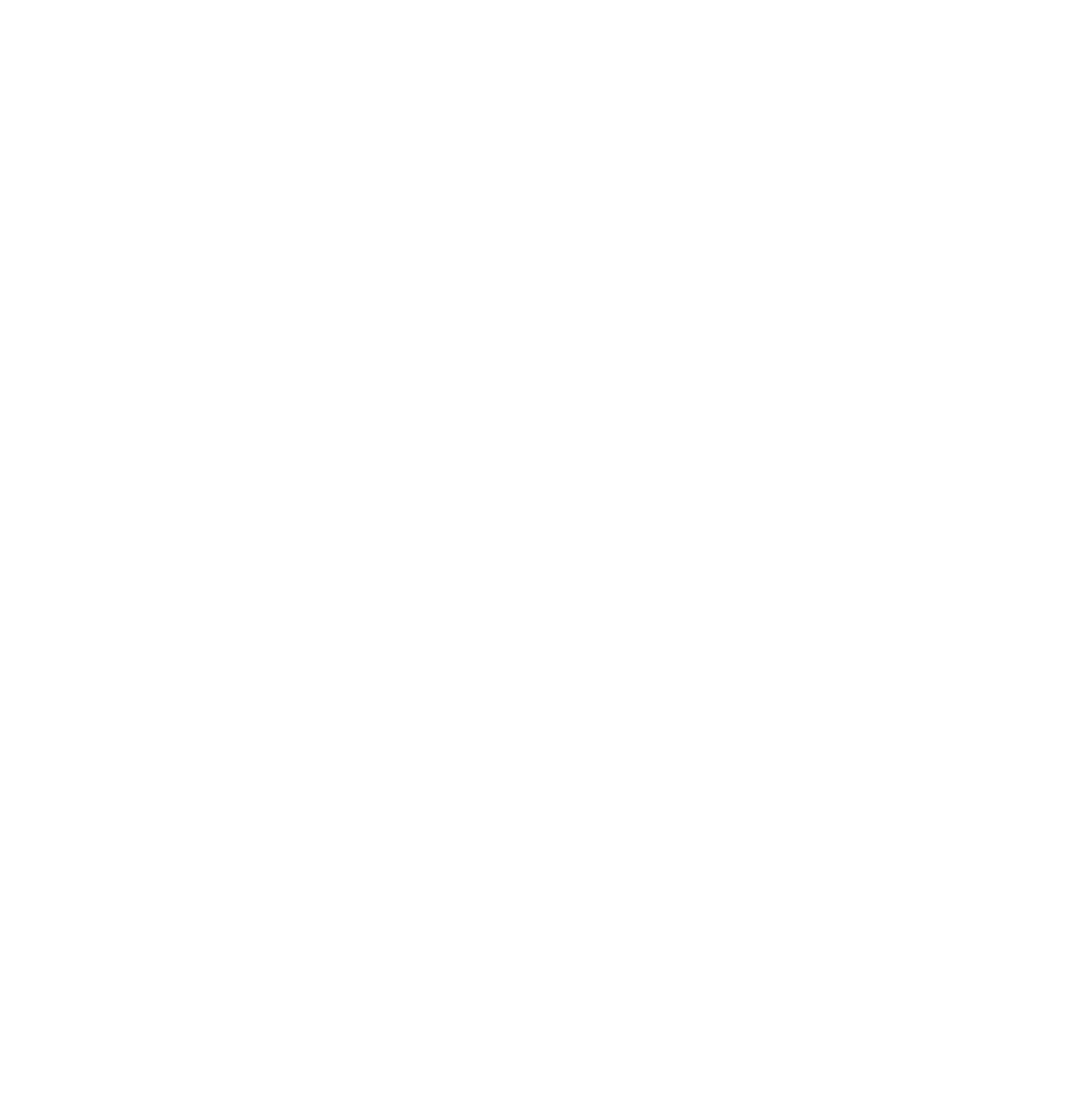 PCUSA Logo White