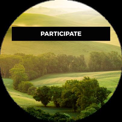 Carbon_Participate