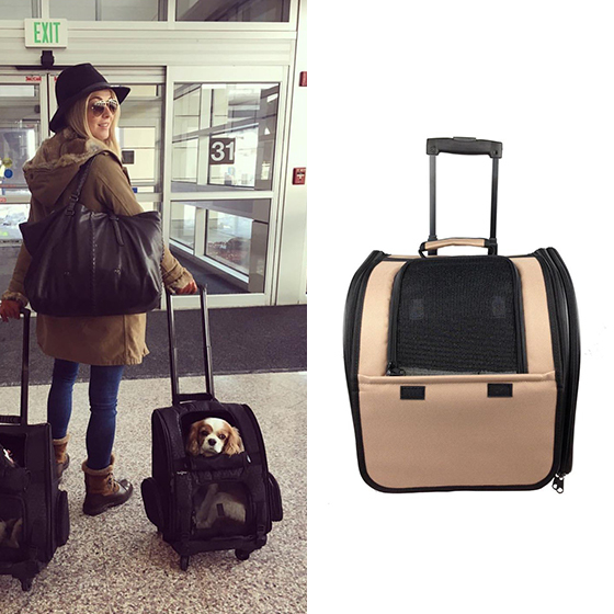 Luggage For Your Loves