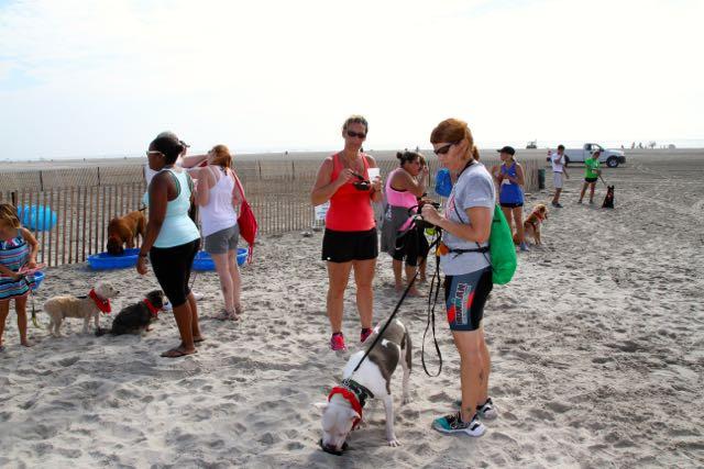 Doggie Dash Race16
