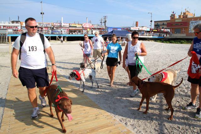 Doggie Dash Race5