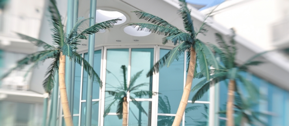 Starlux Exterior With Palm Trees 938X409