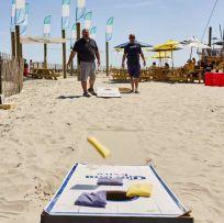 Pig Dog Beach Games