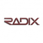 Radix Construction Inc.