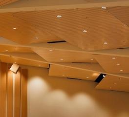 Ceilings Portfolio