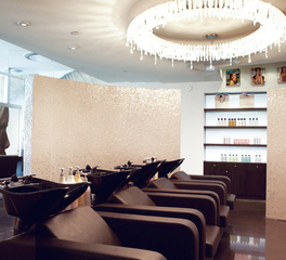 Kimberly Peck Architect - Ted Gibson Salon W Hotel Ft