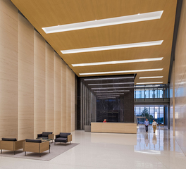 Pure and FreeForm 1000 Maine White Oak Ceiling interior lobby 1