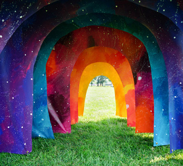 Wennerlyn jenie gao public art portal
