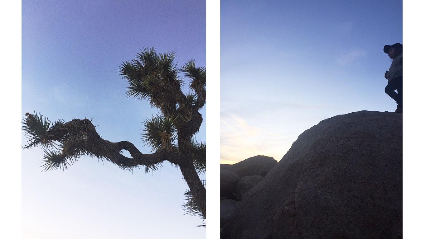 Joshua Tree - Los Angeles sites
