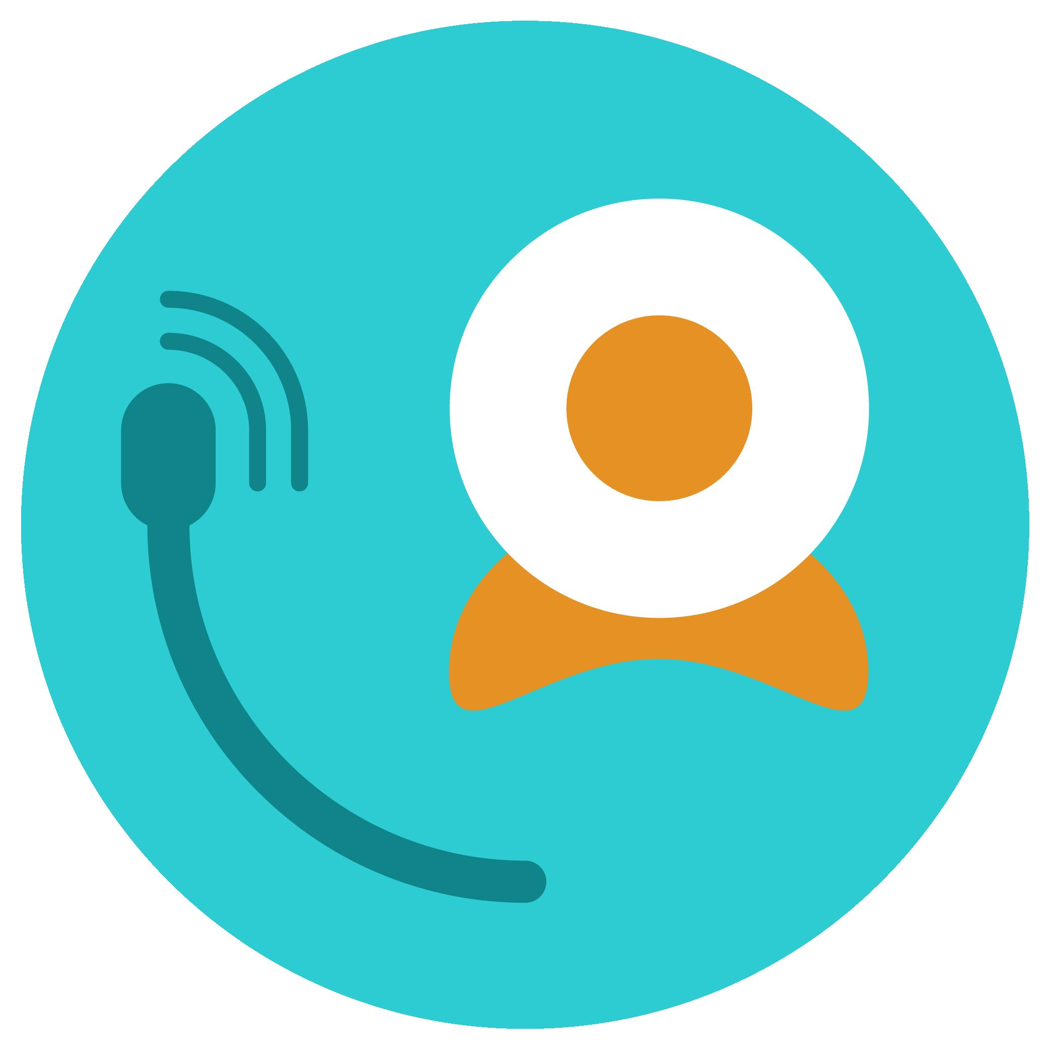 03 - Microfone e webcam.png