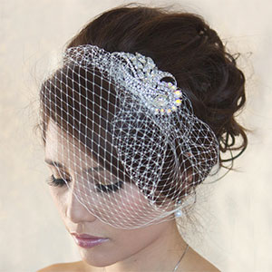 Birdcage Veil with Rhinestone Brooch