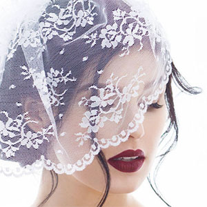 Chantilly Lace Birdcage Veil