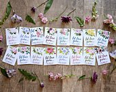 Let Love Grow Custom Seed Wedding Favors SEALED with SEEDS INCLUDED, Colorful, Elegant Wedding Favors, Elegant Wedding Favors, Unique Favor
