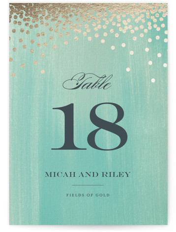 Confetti Foil-pressed Table Numbers