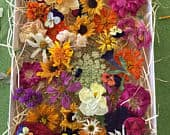 Dried Flowers, Wedding Confetti, Dry Wildflowers, Craft supply, Centerpieces, Table Decor, Flower Girl, Biodegradable, Autumn Dry Flowers