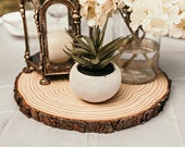 Set of 15 13 inch rustic wedding decor. Wood slices large, Wood slice centerpieces, large wood slices, Wedding centerpieces