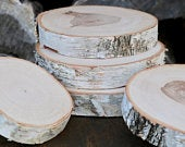 WHITE BIRCH Slices Wood Slices Tree Slices Natural Wood Stand Wood Slab Wood Cake Stand Slice of Wood Wild Thing