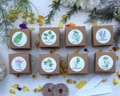 Herb wedding favors, set of 8 herb garden kits, garden party favor, gardening, annual herb seeds, Eco friendly gift seed kit, custom favors
