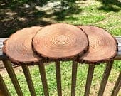 Set of 15 9 inch tree slices! wedding centerpieces, wood slice decor, arts and crafts, wood rounds, wood slice centerpieces, wood stump.