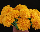 Day of the Dead 24 Yellow Marigolds, Dia de Los Muertos, Mexican Flowers, Crepe Paper Flowers, Wedding Decorations, Cinco de Mayo, Fiesta