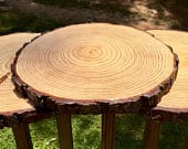Fully Treated wood slices, sealed wood slices, wood slice centerpieces for table decor fall wedding centerpieces holiday wedding centerpiece