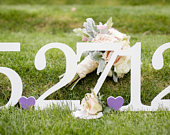 Save the Date Sign Wood Sign Engagement photos Rustic Wedding Date Sign Wedding Decoration Photography Prop