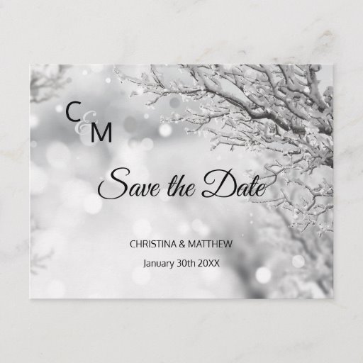Winter Snow Snowflakes Wedding SAVE THE DATE Announcement Postcard