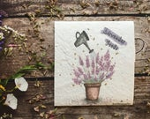 Pack of Lavender Seeds illustrated GiftQuirky illustrated nature inspired giftsGrow your own flowers giftBirthday GiftMothersday gift