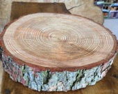 Gorgeous 14 Rustic log slice x 3 thick, ideal for wooden wedding cake stand or table centrepiece