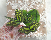 Chartreuse Butterfly Hair Clips with Swarovski crystals. Magical Butterfly Hair Accessories perfect for Parties, Special Occasions.