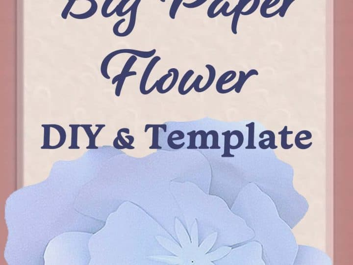 Diy Giant Paper Flowers My Online Wedding Help