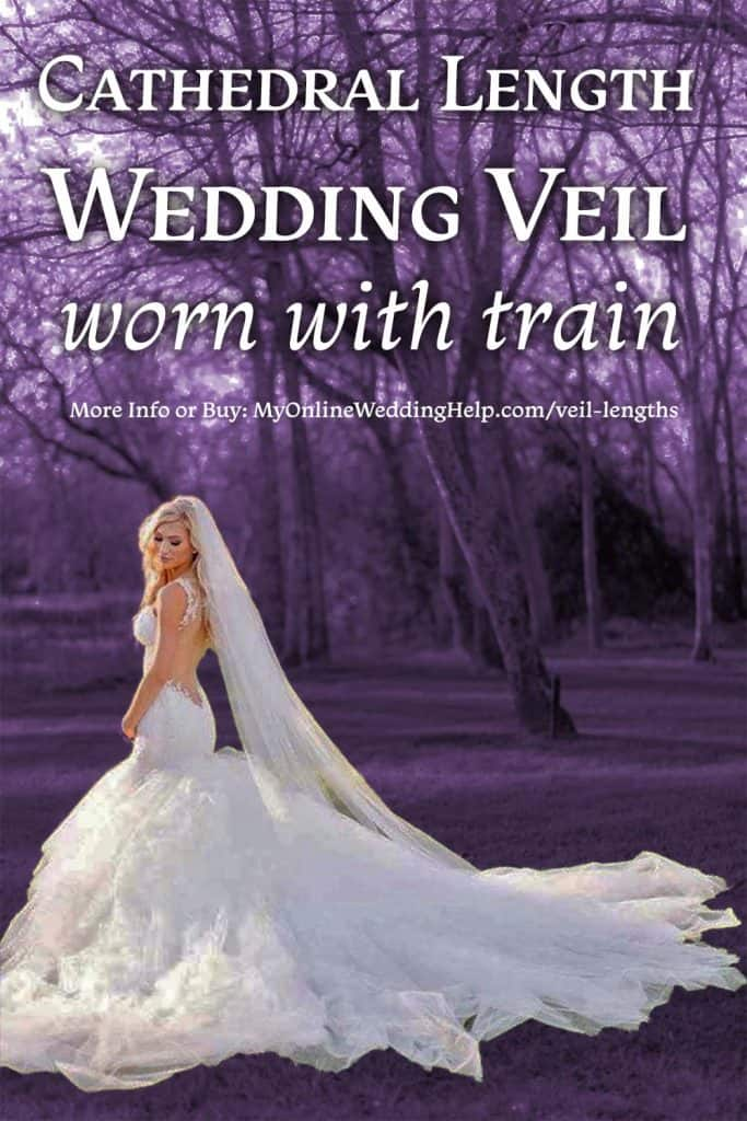 Cathedral length wedding veil worn with a gown with a train.