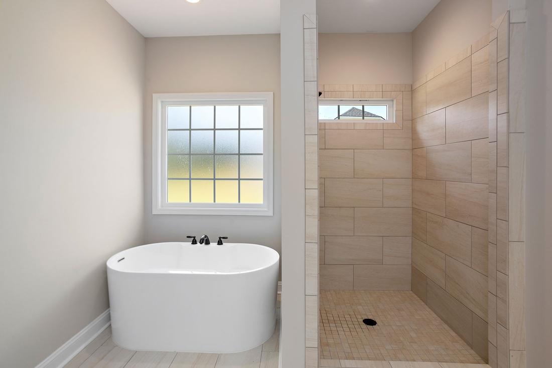 bathroom, walk-in shower, bathtub