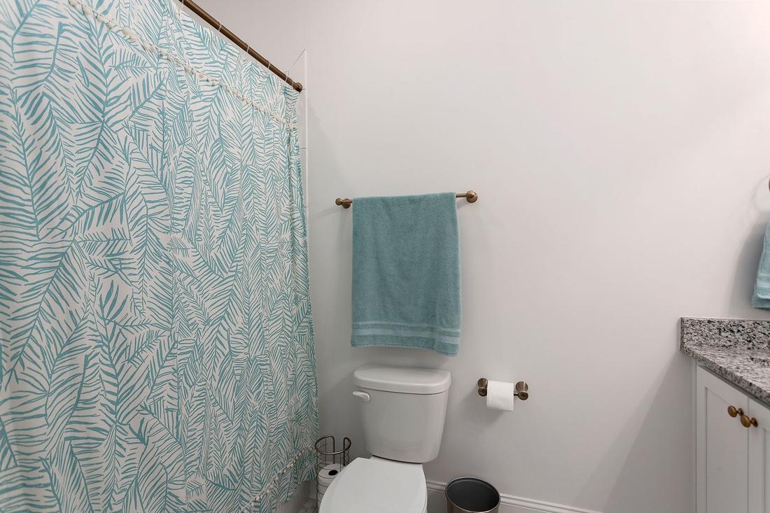 bathroom, toilet, shower