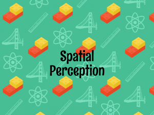 spatial perception